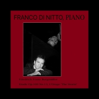 <h5>Franco Di Nitto is on Spotify</h5>